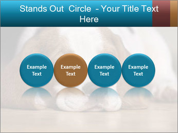 0000084711 PowerPoint Template - Slide 76