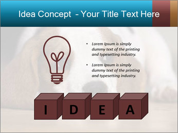 0000084711 PowerPoint Template - Slide 80