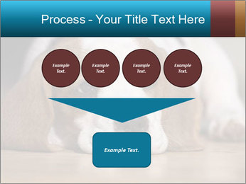 0000084711 PowerPoint Template - Slide 93
