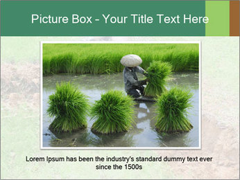 0000084718 PowerPoint Template - Slide 15
