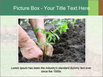 0000084718 PowerPoint Template - Slide 16
