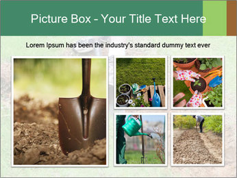 0000084718 PowerPoint Template - Slide 19