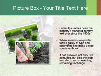 0000084718 PowerPoint Template - Slide 20