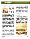 0000084725 Word Template - Page 3