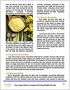 0000084732 Word Template - Page 4