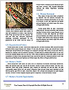 0000084737 Word Templates - Page 4