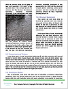 0000084739 Word Templates - Page 4