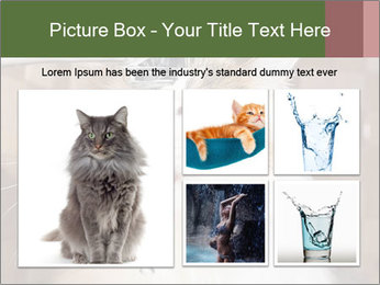 0000084741 PowerPoint Templates - Slide 19