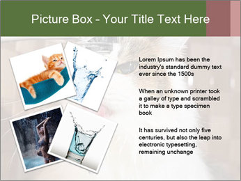 0000084741 PowerPoint Templates - Slide 23
