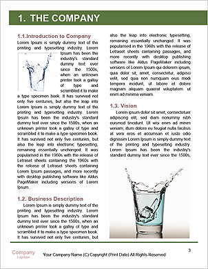 0000084741 Word Template - Page 3