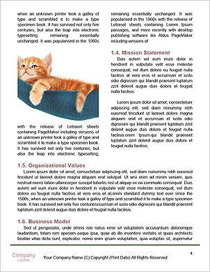 0000084741 Word Template - Page 4