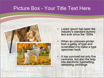 0000084756 PowerPoint Template - Slide 20