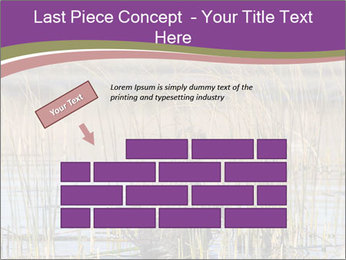 0000084756 PowerPoint Template - Slide 46