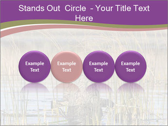0000084756 PowerPoint Template - Slide 76