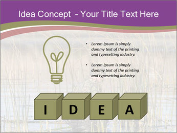 0000084756 PowerPoint Template - Slide 80