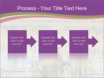 0000084756 PowerPoint Template - Slide 88