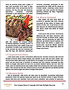 0000084772 Word Templates - Page 4