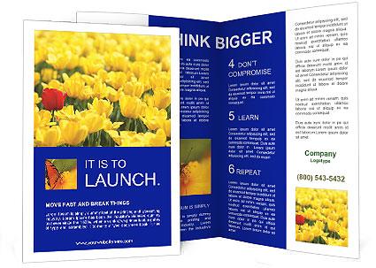 0000084774 Brochure Template