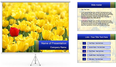 0000084774 PowerPoint Template