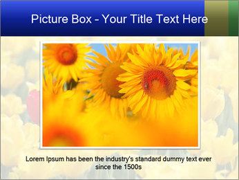 0000084774 PowerPoint Templates - Slide 16