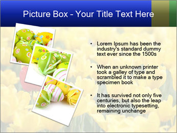 0000084774 PowerPoint Templates - Slide 17