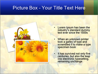 0000084774 PowerPoint Templates - Slide 20