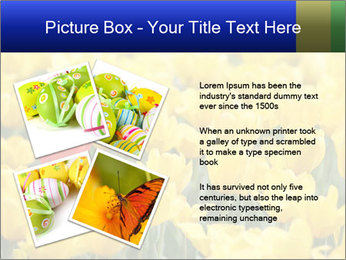 0000084774 PowerPoint Templates - Slide 23