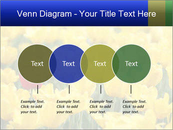 0000084774 PowerPoint Templates - Slide 32