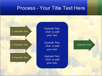 0000084774 PowerPoint Templates - Slide 85