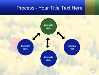 0000084774 PowerPoint Templates - Slide 91