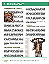 0000084782 Word Template - Page 3