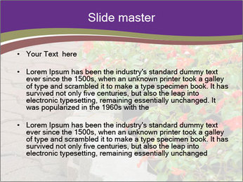 0000084787 PowerPoint Templates - Slide 2
