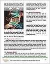 0000084796 Word Templates - Page 4