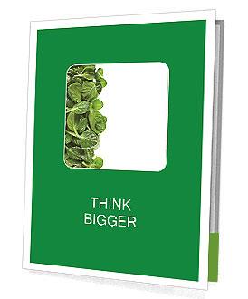 0000084797 Presentation Folder