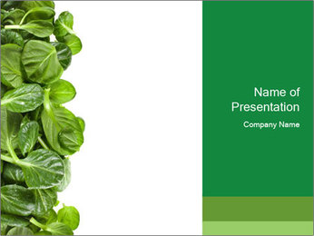 0000084797 PowerPoint Template - Slide 1