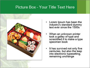 0000084797 PowerPoint Templates - Slide 13