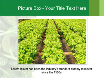 0000084797 PowerPoint Template - Slide 15