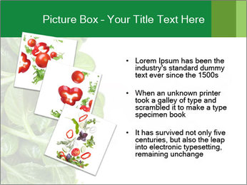 0000084797 PowerPoint Template - Slide 17