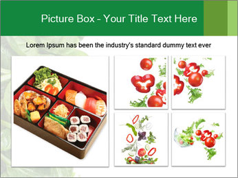 0000084797 PowerPoint Template - Slide 19