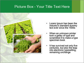 0000084797 PowerPoint Template - Slide 20