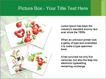 0000084797 PowerPoint Template - Slide 23