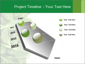 0000084797 PowerPoint Templates - Slide 26