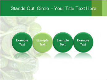 0000084797 PowerPoint Templates - Slide 76
