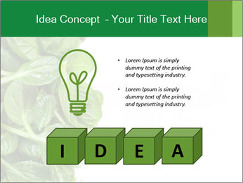 0000084797 PowerPoint Template - Slide 80
