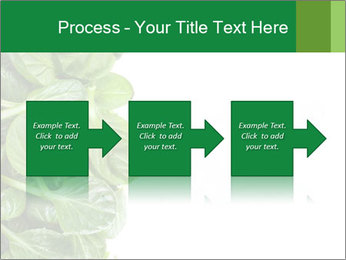 0000084797 PowerPoint Templates - Slide 88