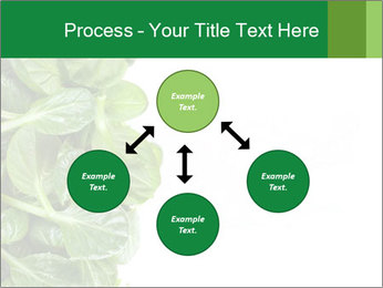 0000084797 PowerPoint Template - Slide 91