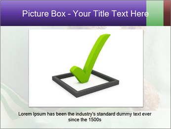 0000084802 PowerPoint Template - Slide 15