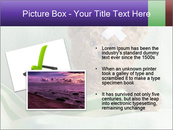 0000084802 PowerPoint Template - Slide 20