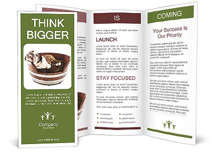0000084811 Brochure Templates