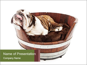0000084811 PowerPoint Template